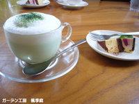 Ancafe4